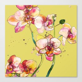 Pink Orchids in Yellow Canvas Print