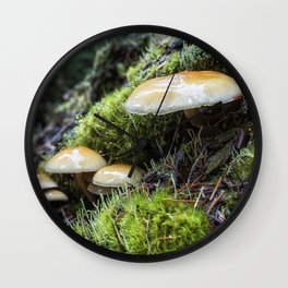 Nature's Little Helpers Wall Clock