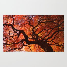 Ephemeral - Fall Maple Leaves, Nature Photography Rug