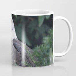 National Aviary - Pittsburgh - Bald Eagle 2 Coffee Mug