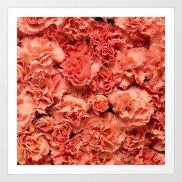 Coral Carnations Art Print