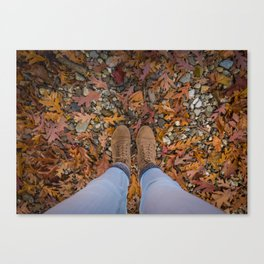 Fall Shoes 2 Canvas Print