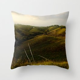 Beauty of Nature @ Rincon Throw Pillow