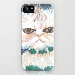 punk kitty iPhone Case