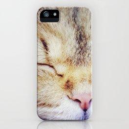Sleeping Angel 4 iPhone Case