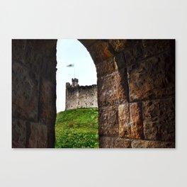Cardiff Castle, Wales. Canvas Print