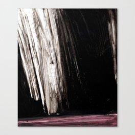 film No15 Canvas Print