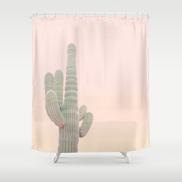 Pastel Colors Cactus Photo