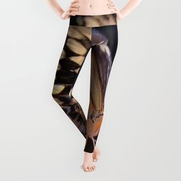 Swallowtail Overexposed Leggings