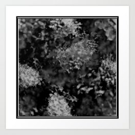 Black and white frost Art Print