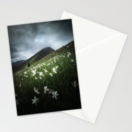 Mountain Golica and Narcissus flowers Stationery Cards