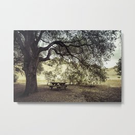 Picnic in the Grasslands Metal Print
