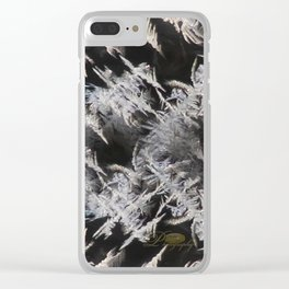 Ice Pattens Clear iPhone Case