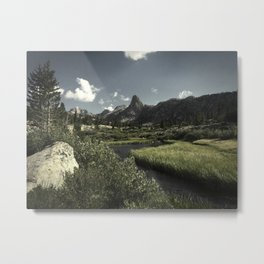 Fin Dome, Rae Lakes Meadow Metal Print