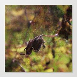 Old leaf artistic composition Canvas Print