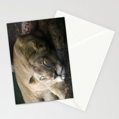 Cat nap II Stationery Cards