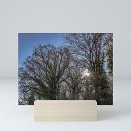 Beautiful day in a winter forest Mini Art Print