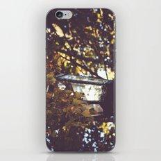 autumn leaves, lamp post iPhone & iPod Skin