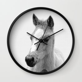 Baby Horse, Farm Animal Print Wall Clock