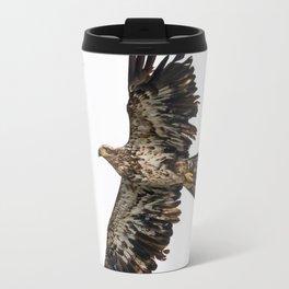 Immature Bald Eagle Travel Mug