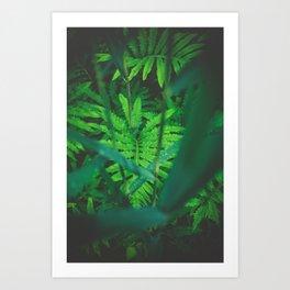 Jungle Green on a Rainy Day Art Print