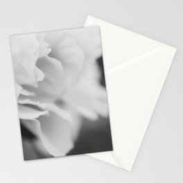 Peony in Black and White Stationery Cards