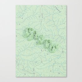 Topo Faith. Canvas Print