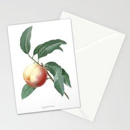 HIGHEST QUALITY botanical poster of Nectarine Stationery Cards