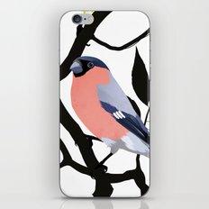 Dawn Chorus iPhone & iPod Skin