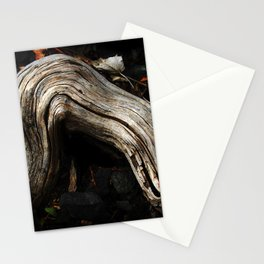 Decay and New Life Stationery Cards