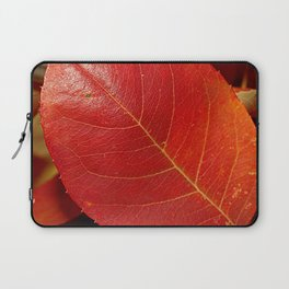 Autumn coppery red Juneberry berry leaf Laptop Sleeve