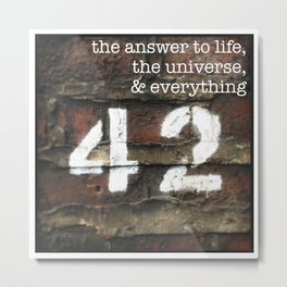42 - The Meaning of Life. Metal Print