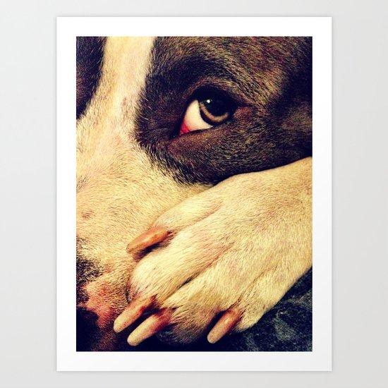 Pitbull profile Art Print