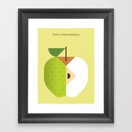 Fruit: Apple Golden Delicious Framed Art Print