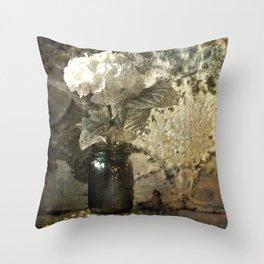 Vintage Mercury Jars Throw Pillow