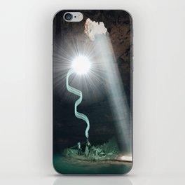 Harry and Dumbledore iPhone Skin
