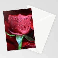 Rose Water Drops Stationery Cards