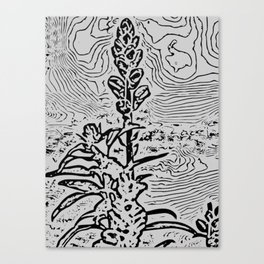 Graphic Yucca Canvas Print