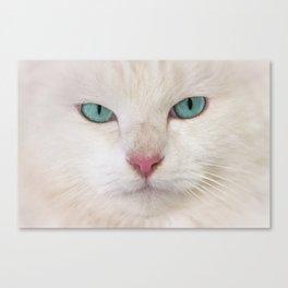 WHITE DELIGHT Canvas Print