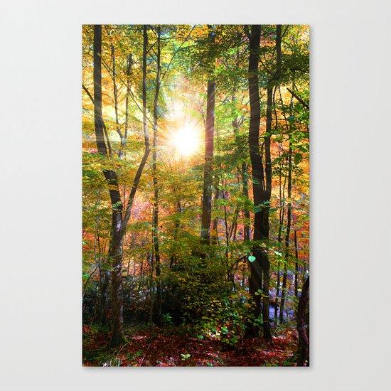 Morning Glory Canvas Print