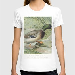 Mallard Duck (Anas Boschas) Male illustrated by JL Ridgway (1859-1947) and WB Gillette (1864-1937) f T-shirt