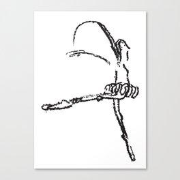 Bailarina Crayola Canvas Print