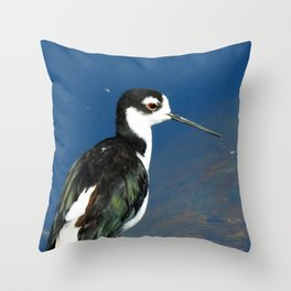 Juvenile Black Necked Stilt Throw Pillow