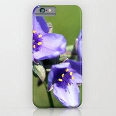 Spiderwort Slim Case iPhone 6s