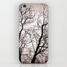 Branches in Winter iPhone & iPod Skin