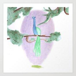 Peacock Prime Art Print