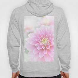 Beauty IV Hoody
