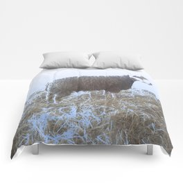 Solitude on straw Comforters