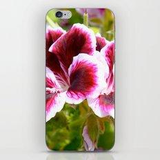 Hibiscus in Maui iPhone & iPod Skin