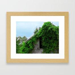 Natural Reclamation  Framed Art Print
